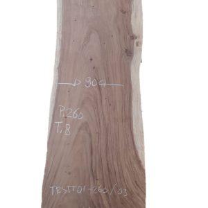 Boomstamtafel 260 cm. (95-90-100)